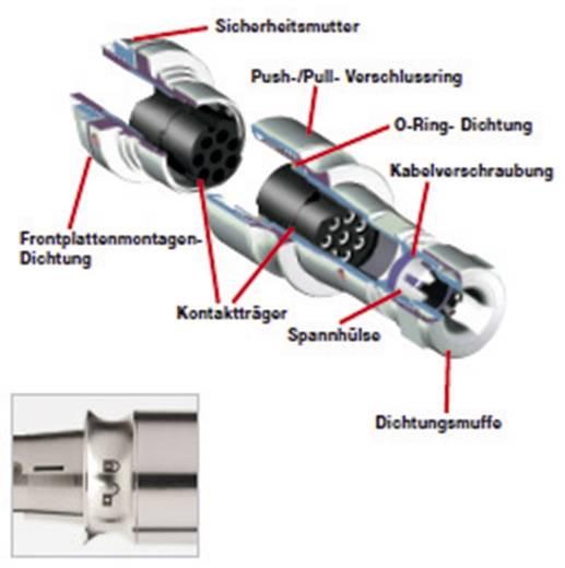 Bulgin PXM6010/08P/CR Rundstecker Stecker, gerade Serie (Rundsteckverbinder): PXM Gesamtpolzahl: 8 1 St.