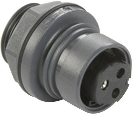 Frontplattenmontierter Steckverbinder Pole: 3 Buchsenkontakt 16 A PXP6012/03S/ST Bulgin 1 St.