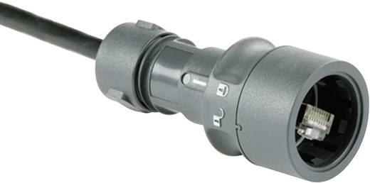 Sensor-/Aktor-Datensteckverbinder Stecker, gerade Polzahl: 8P8C Bulgin PXP6034/B 1 St.