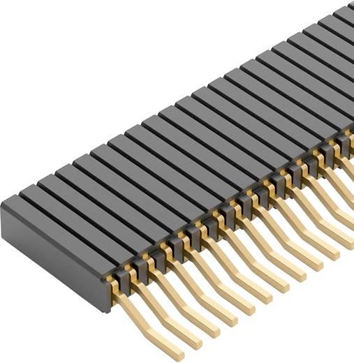 Buchsenleiste (Standard) Anzahl Reihen: 1 Polzahl je Reihe: 20 Fischer Elektronik BLM 3 SMD/ 20/G 1 St.