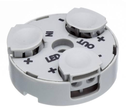 Verteiler-Box flexibel: 0.34-0.5 mm² starr: 0.34-0.5 mm² Polzahl: 2 Adels-Contact 601103 1 St. Licht-Grau