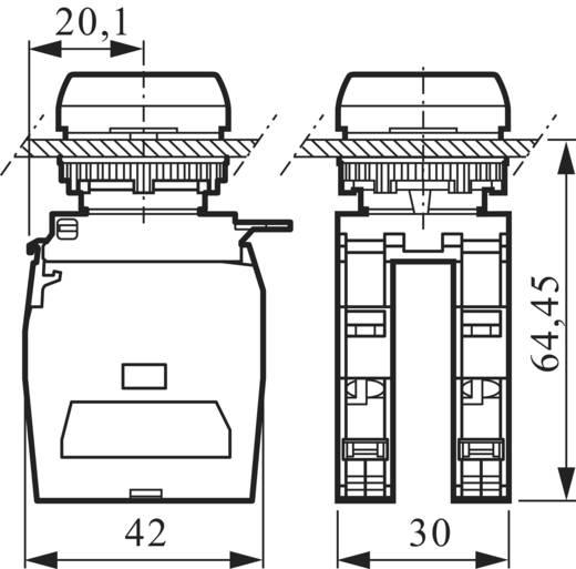 Kontaktelement mit Befestigungsadapter 2 Öffner, 2 Schließer tastend 600 V BACO 334E22 1 St.