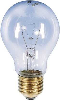 Ampoule de four Barthelme E27 40 W 1 pc(s)