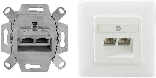 Netzwerkdose Unterputz Einsatz mit Zentralplatte und Rahmen CAT 6 2 Port Rutenbeck 138112070 Reinweiß