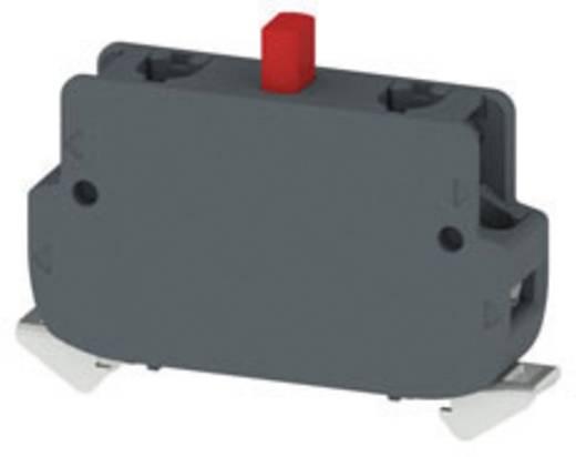 Kontaktelement 2 Öffner tastend 250 V/AC Pizzato Elettrica E2CF02G2V1 10 St.