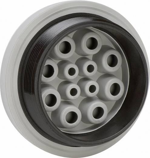 Icotek KEL-DPZ 40/8 Kabeldurchführungsplatte Klemm-Ø (max.) 10.2 mm Polyamid, Elastomer Grau 1 St.