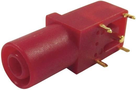 Sicherheits-Laborbuchse Buchse, gewinkelt Stift-Ø: 4 mm Rot Cliff FCR7350R 1 St.