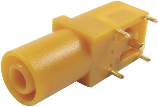 Sicherheits-Laborbuchse Buchse, gewinkelt Stift-Ø: 4 mm Gelb Cliff FCR7350Y 1 St.