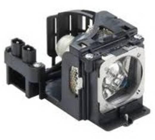 Beamer-Ersatzlampe golamps GL313 3000 h GL313