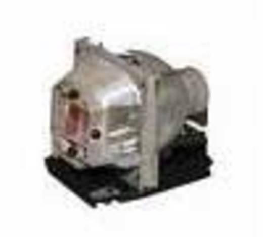 Beamer-Ersatzlampe golamps GL512 3000 h GL512