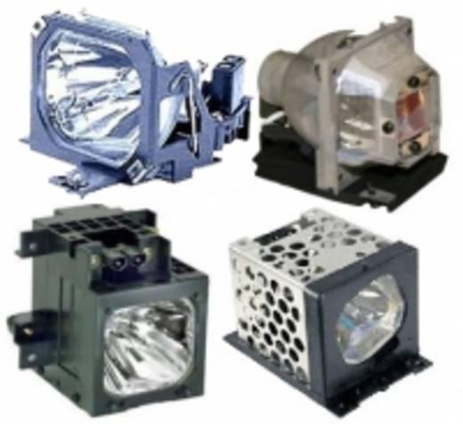 Beamer-Ersatzlampe golamps GL169 2000 h GL169