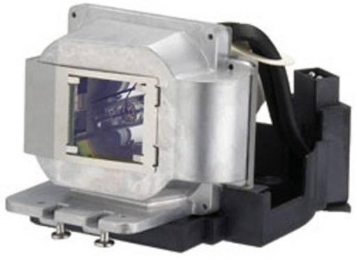 Beamer-Ersatzlampe golamps GL246 2000 h GL246