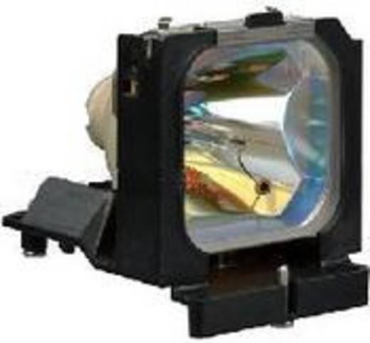 Beamer-Ersatzlampe golamps GL057 3000 h GL057