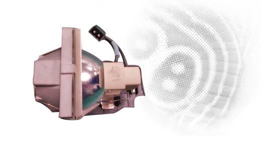 Beamer Ersatzlampe BenQ 9E.0C101.001 Passend für Marke (Beamer): BenQ