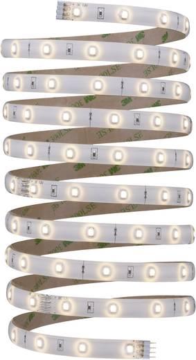 LED-Streifen-Komplettset mit Stecker 12 V 300 cm Warm-Weiß Paulmann YourLED 70320