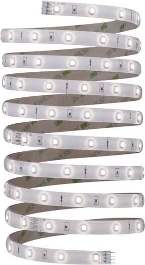 LED-Streifen-Komplettset mit Stecker 12 V 300 cm Neutral-Weiß Paulmann YourLED 70321