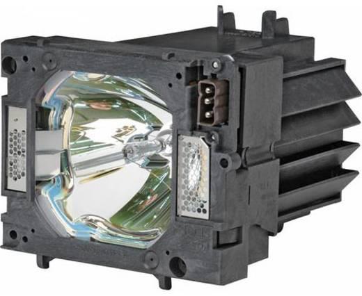 Beamer-Ersatzlampe golamps GL519 3000 h GL519
