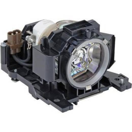 Beamer-Ersatzlampe golamps GL273 2000 h GL273