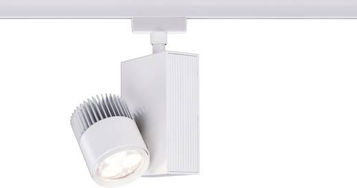 Hochvolt-Schienensystem-Leuchte URail LED fest eingebaut 9 W LED Paulmann TecLed Weiß