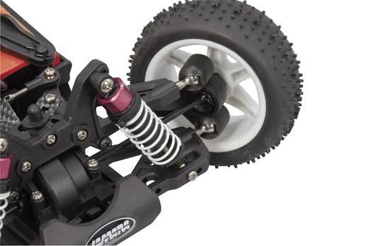 Jamara Major 1:10 BL 4WD Buggy RTR 2,4GHz