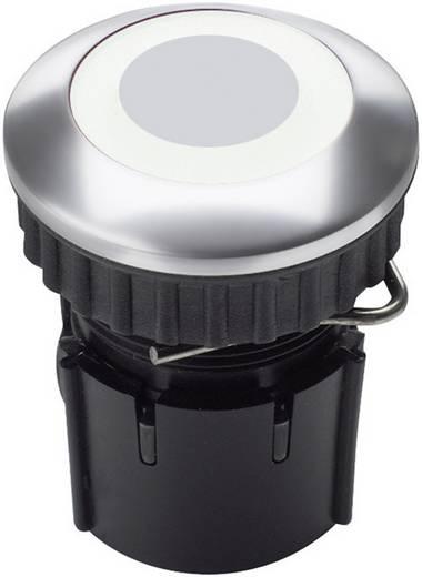 Klingeltaster LED-Ring weiß PROTACT 230