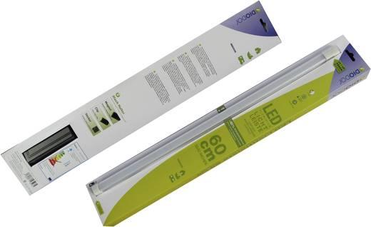 LED-Unterbauleuchte 10 W Warm-Weiß DioDor DIO-TL60-SP-FN Weiß