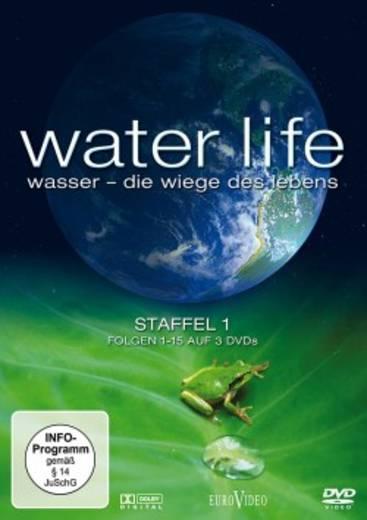 DVD Water life Staffel 1 - Folgen 1-15 FSK: 0