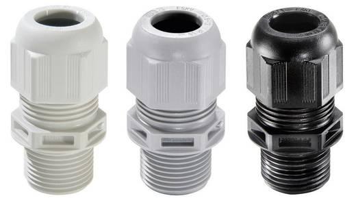 Kabelverschraubung M40 Polyamid Silber-Grau (RAL 7001) Wiska ESKV-L 40 LT 10 St.