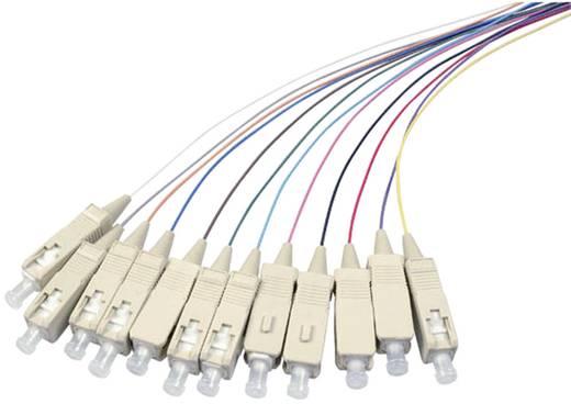 Glasfaser LWL Anschlusskabel [1x SC-Stecker - 1x offenes Ende] 50/125µ Multimode OM4 2 m EFB Elektronik