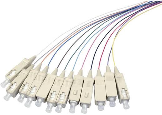 Glasfaser LWL Anschlusskabel [1x SC-Stecker - 1x offenes Ende] 9/125µ Singlemode OS2 2 m EFB Elektronik
