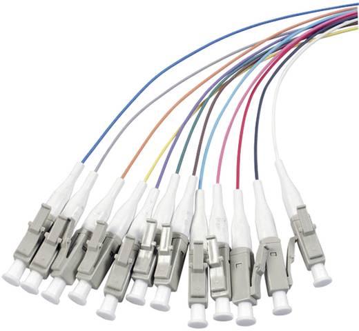Glasfaser LWL Anschlusskabel [1x LC-Stecker - 1x offenes Ende] 50/125µ Multimode OM3 2 m EFB Elektronik