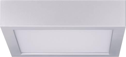 LED-Deckenleuchte Warm-Weiß Paulmann 70387 Chrom (matt), Weiß