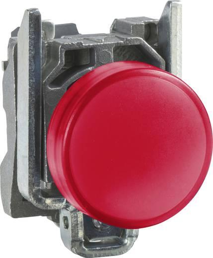 Meldeleuchte Rot 24 V/DC, 24 V/AC Schneider Electric XB4BVB4 1 St.