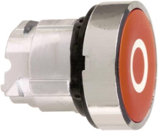 Drucktaster Betätiger flach Grün Schneider Electric Harmony ZB4BA331 1 St.