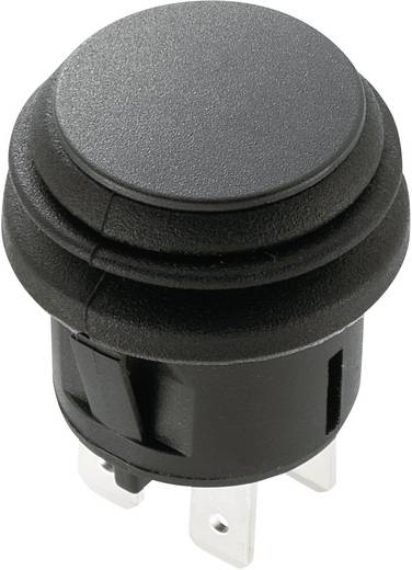 Drucktaster 250 V/AC 6 A 4 x Aus/(Ein) SCI R13-527A2-02 tastend 1 St.