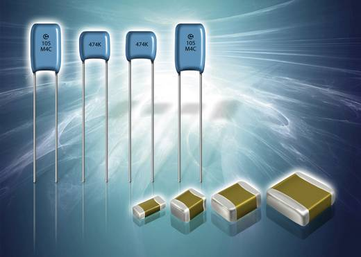 Keramik-Kondensator radial bedrahtet 220 pF 100 V 5 % (L x B) 5 mm x 3.5 mm Murata RPE5C2A221J2S1A03A 1 St.