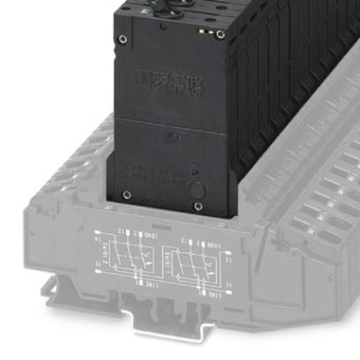 Schutzschalter thermisch 250 V/AC 1 A Phoenix Contact TMCP 1 F1 300 1,0A 6 St.