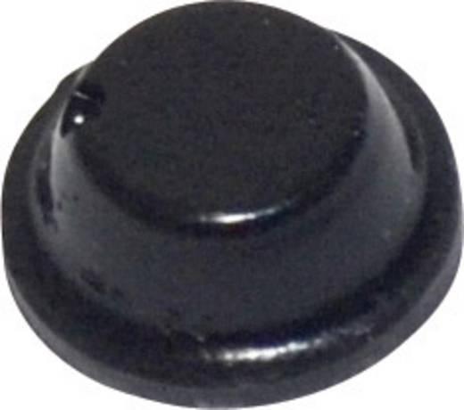 Gerätefuß selbstklebend, rund Schwarz (Ø x H) 8 mm x 2.8 mm TOOLCRAFT PD2075SW 1 St.