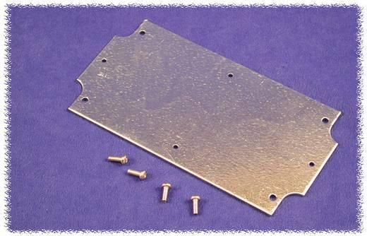 Montageplatte (L x B x H) 109 x 79 x 1 mm Stahlblech Natur Hammond Electronics 1554FPL 1 St.