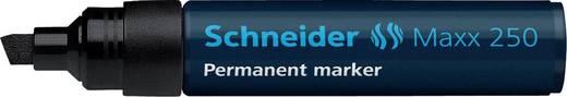 Schneider Permanent-Marker 250/125001, schwarz, Gehäuse blau, 2+7mm