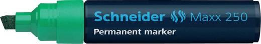 Schneider Permanent-Marker 250/125004, grün, Gehäuse blau, 2-7mm
