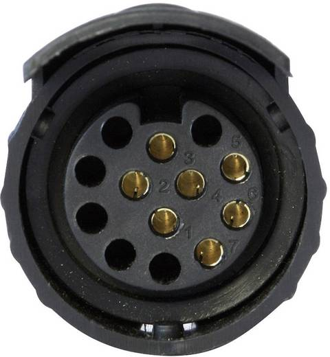 Anhänger Adapter [Steckdose 7polig - Stecker 13polig] DINO 130008 ABS Kunststoff