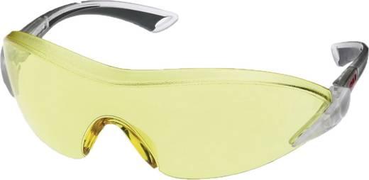 Schutzbrille 2842