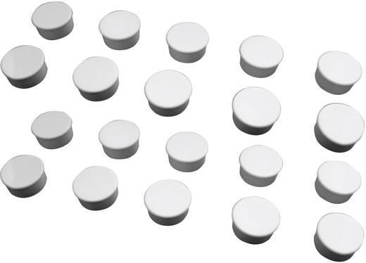 Magnete Farbe Weiß (Ø) 16 mm Anzahl: 20