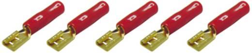 Car HiFi Flachsteckhülsen 5er Set 2.5 mm² 4.8 mm AIV vergoldet