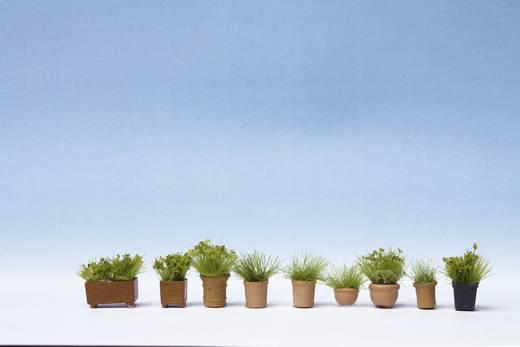 NOCH 9 gröna växter i blomkrukor 14032 H0 Grünpflanzen in Blumentöpfen