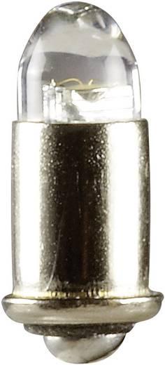 LED-Birne Weiß MS4 19 V 51961