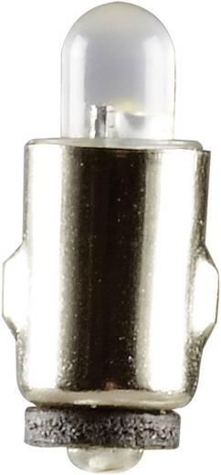 LED-Birne Weiß BA5s 19 V 51931