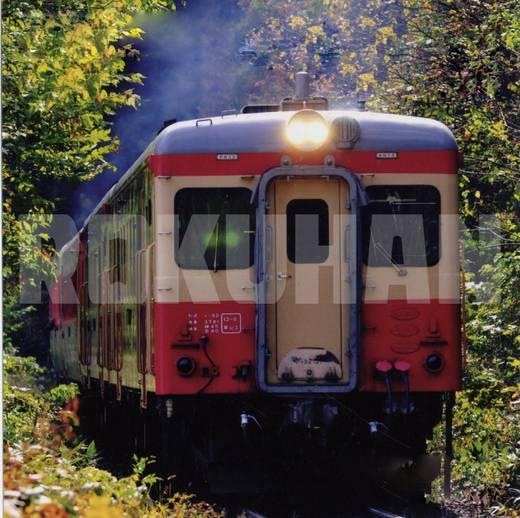 Rokuhan 7297701 Z 4teiliger Elektro-Triebzug Serie113-2000