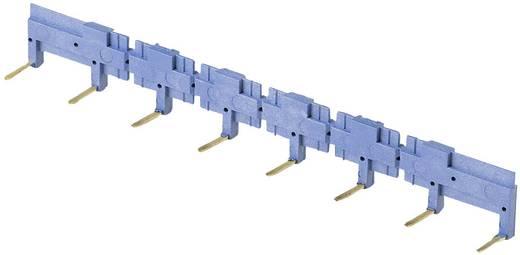 Kammbrücke Polzahl: 8 Blau 1 St. Finder 095.08